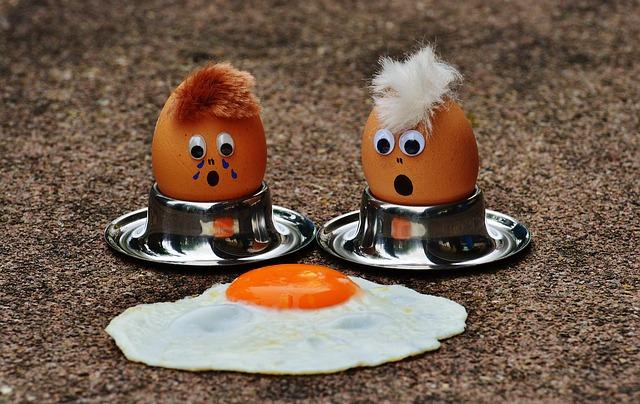 úmrtí vejce