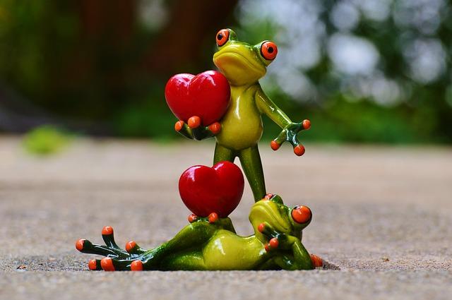 zamilované žáby